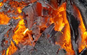 焚烧和碳化